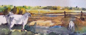 Sheep-Watercolor