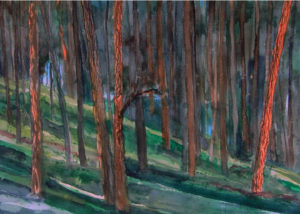 Wind Cave Nat'l Park-Watercolor